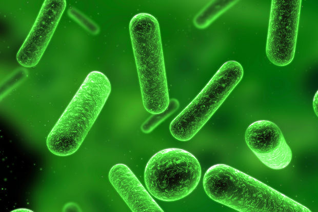 İdrar yolu enfeksiyonlarında mikrobiyolojik örnek almanın önemi