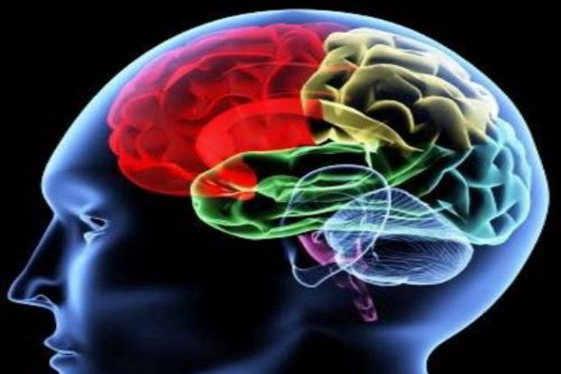 Az yemek beyni genç tutabilir