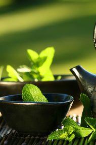 Sağlık kaynağı yeşil çay