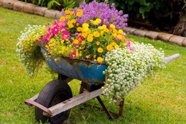 Bahçelerde bahar zamanı!