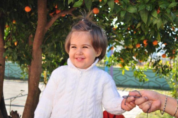 Ayliz Şenli