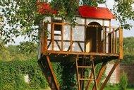 Doğanın içindeki ağaç evler
