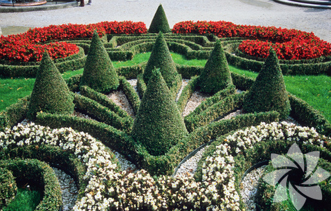 Dünyanın en ilginç bahçeleri...