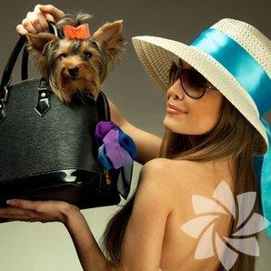 Bir kadının her daim çantasında olması gereken 7 malzeme!