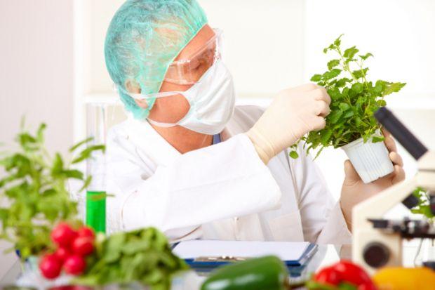 Yemeklerde kullanılan kimyasallar!
