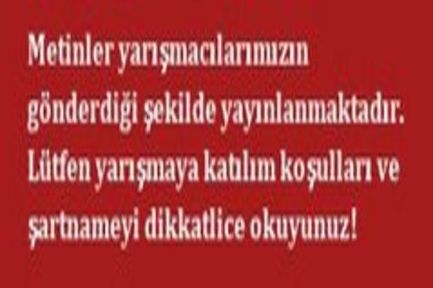 Türker Efe Çetin