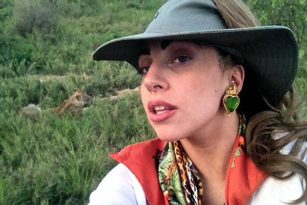 Gaga'nın safaride 13 aslanla imtihanı!