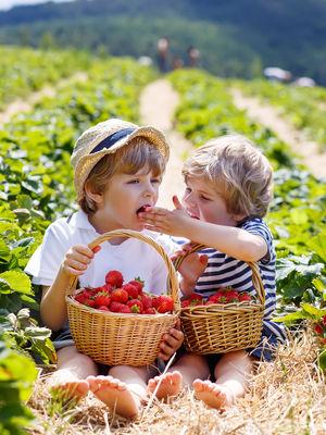 Organik ürünler tüketmek için çok nedeniniz var!