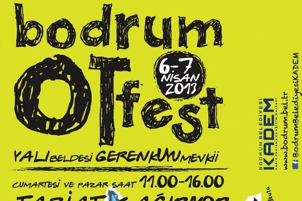 Bodrum ot Festivali Bodrum ot Festivali'nde