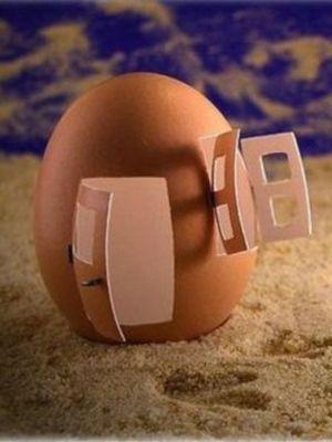 Yumurtalarla sanat