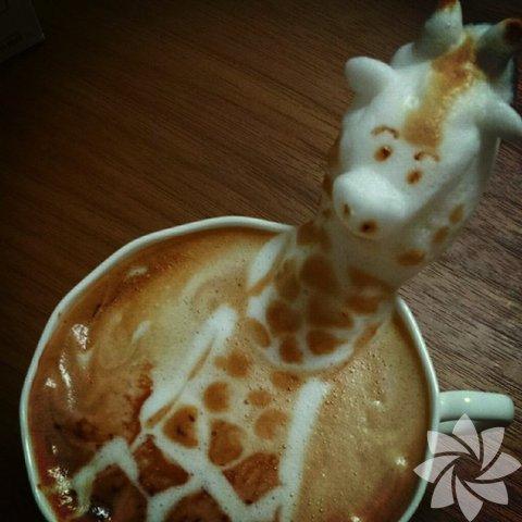 3 boyutlu kahve sanatı