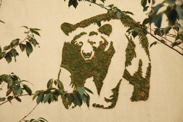 Sokak sanatının en yeşil halleri...