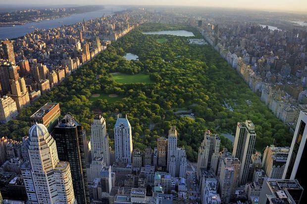 Şehir parkları akıl sağlığını olumlu etkiliyor