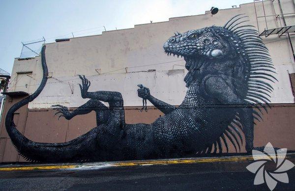 Hayvanlarla duvarları süsleyen adam: Roa