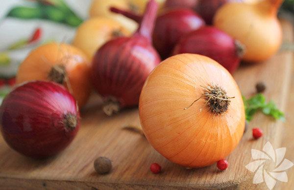 """Sağlıklı yaşam ve beslenmeyle ilgili yayın yapan """"www.fitnea.com""""  internet sitesi de soğanın sağlık üzerindeki olumlu etkilerini sıraladı.  İşte soğan yemek için beş neden:"""