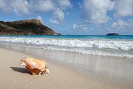 Doğa harikası 100 plaj