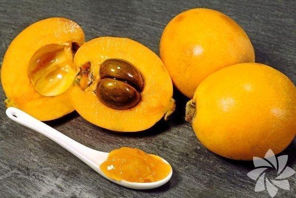 Baharın geldiğini müjdeleyen sulu, iri çekirdekli malta eriği özellikle A vitamini yönünden çok zengin... İşte size bu meyvenin bilmediğiniz diğer özellikleri...
