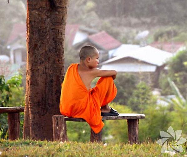 Muang La Resort, Laos Eğer Laos' a yolunuz düştüyse, sakin ve antik bir deneyim için size Luang Prabang'ı önerebiliriz. Bu şehir aynı zamanda UNESCO tarafından dünya mirası listesine girmiştir. Bu şehirde otobüs ve kamyonlar yasaklanmıştır. Ülkenin kuzeyine doğru giderken yüksek platolar, bol yeşil alan ve uçurumları geçerek Muang La Resort'e bir uğrayın. Bu mekan yoga ve meditasyon için iyi bir ibadethane olmasının yanı sıra size, etnik azınlık kabileleri ziyaret, doğal kaplıca deneyimi, gençleştirici bir spa deneyimi, bir yemek kursu, ya da cip ile orman gezintisi fırsatları da sunuyor.