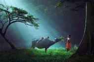 32 fotoğraf ile çocukların sihirli dünyası