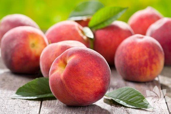 A, B, C vitaminleri ile potasyum, kalsiyum, magnezyum, sodyum, demir ve fosfor mineralleri bakımından oldukça zengin bir meyvedir.