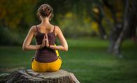 Sek Yoga neden bünyeye alerji yapmaz?