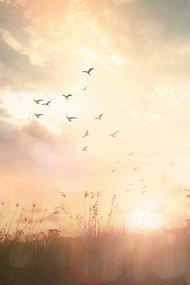 Gerçekten mutlu insanların umursamadığı 15 şey