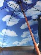 Bu şemsiyeler bir harika dostum!