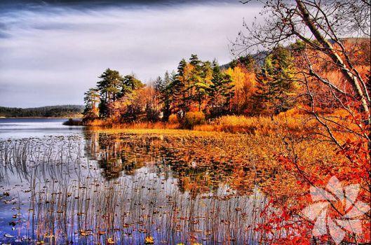Sonbahar rotasında Abant Gölü...