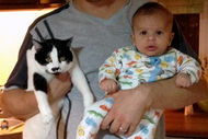 Evde bebek bakan babanın maceraları - 3