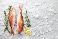 Ekim ayında hangi balıklar yenir?