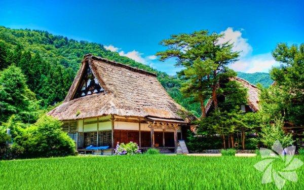 Gifu Köyü, Japonya'da bulunuyor.