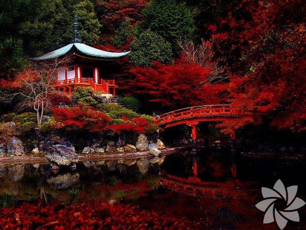 Kyoto, Japonya'nın en büyük üçüncü şehri...