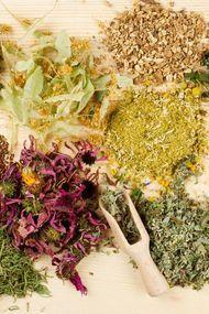 Kilo verdiren bitki çayları