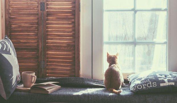 Minimalist bir hayat yaşamanın 8 faydası
