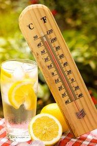 Sıcak havalarda doğru beslenin!