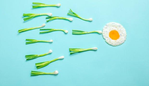 Sperm kalitesini artıran besinler