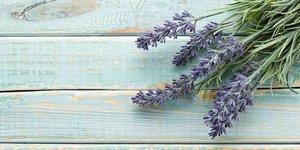 Ev yapımı lavanta aromalı parfüm