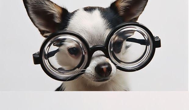 Gözler asıl sağlığın aynası!