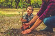 Montessori'den çocuk yetiştirmeye dair 19 tavsiye