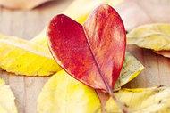Sevgilinize hediye edebileceğiniz aşk kitapları