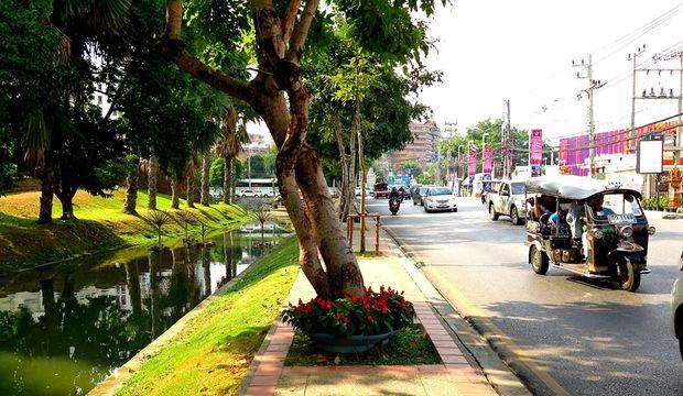 Yol Hikayeleri: Chiang Mai'de kaybolmak