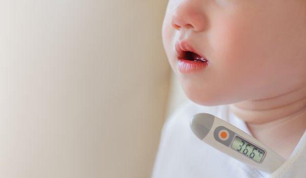 El-ayak ve ağız hastalığı nasıl bulaşır?