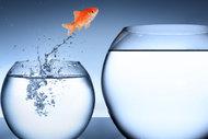 Hayatınızı değiştirmeye hazır mısınız?