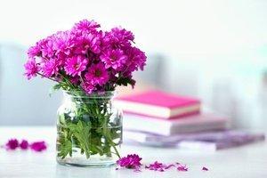 9 adımda çiçeklere şifa