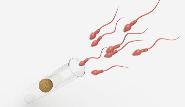 Sperm bankası hakkında her şey