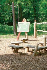 Bambaşka bir eğitim sistemi: Orman okulları