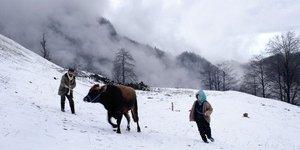 Türkiye'nin Oscar adayı: Kalandar Soğuğu