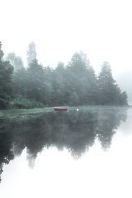 İsveç doğasına aşık olmak
