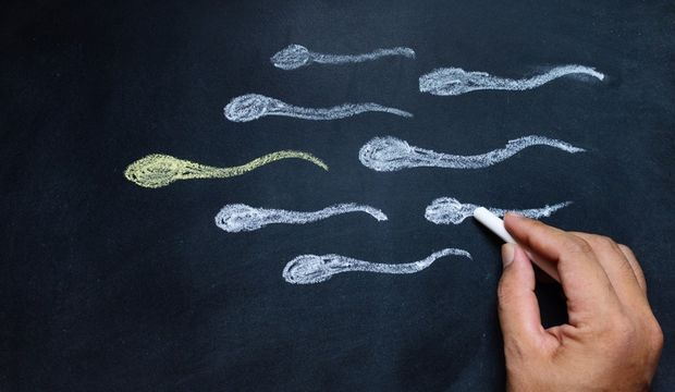 Spermin 16 düşmanı