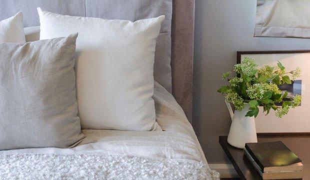 Yatak odanızda bu 5 bitki mutlaka olsun
